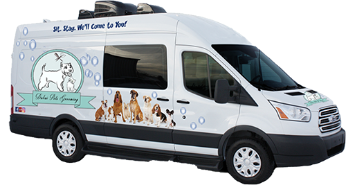 Dubai-pets-grooming-van