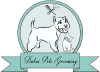 Best Pet Grooming Service Dubai | Dubai Pets Grooming Services Near Me